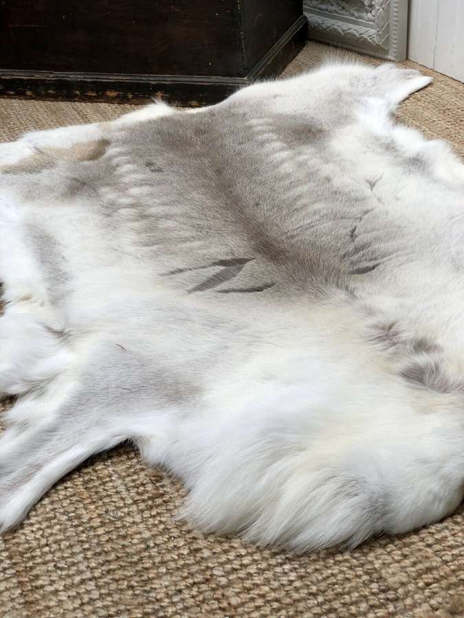 Scanavian reindeer hide