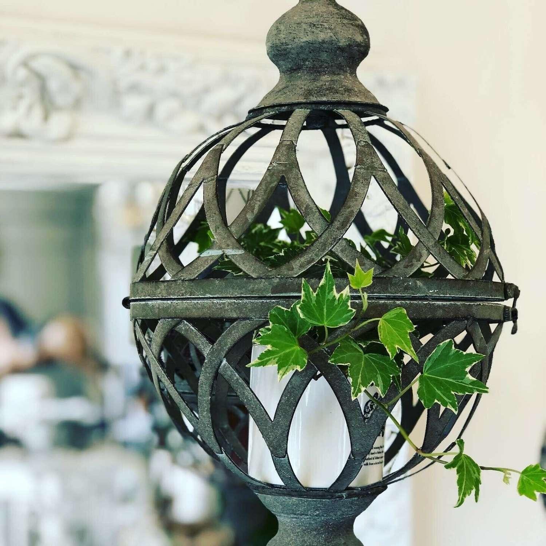 Globe hanging planter