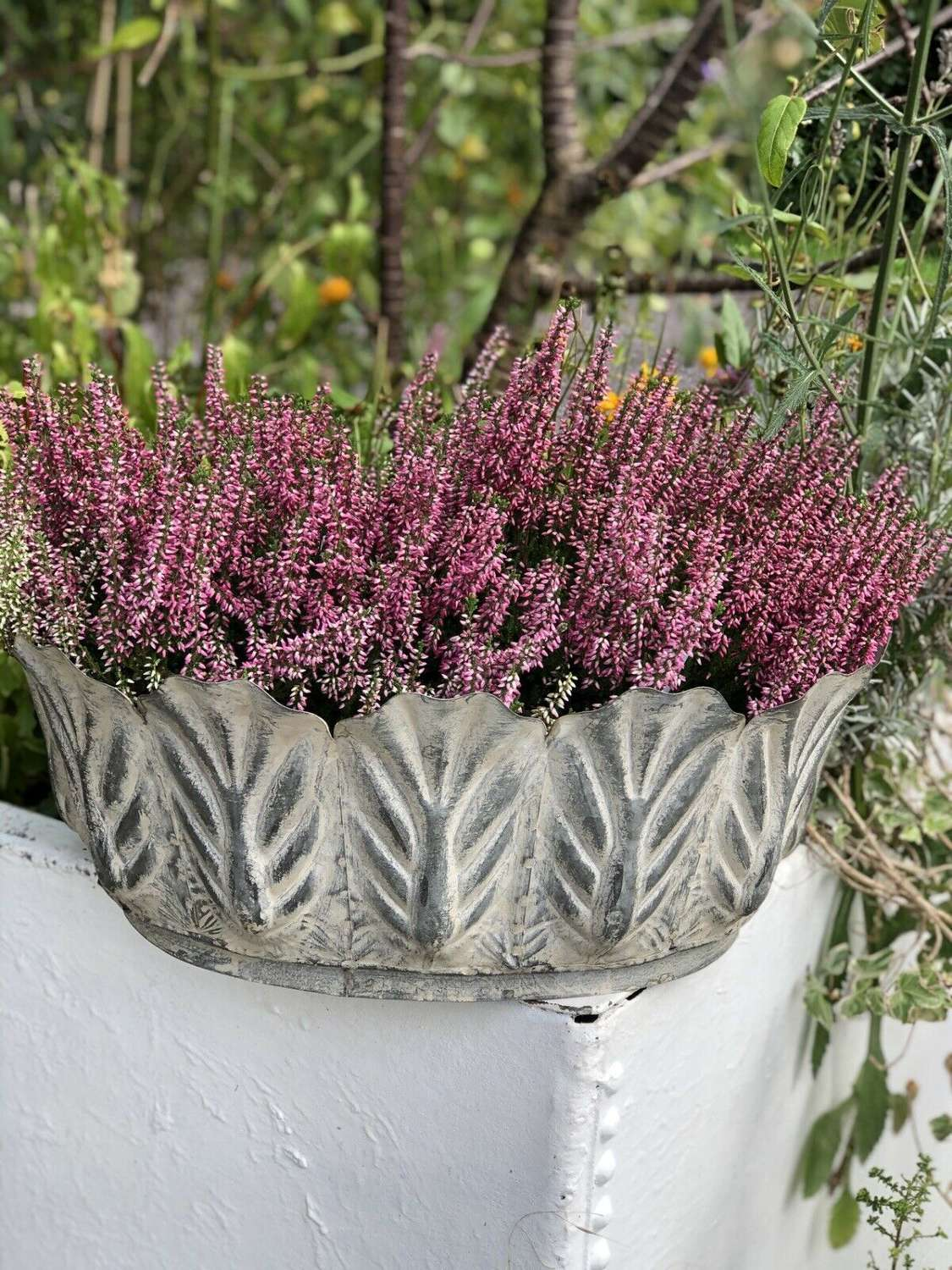 Foliate Galvanised Planter
