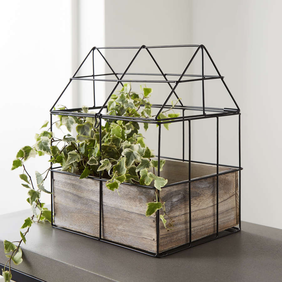 Green house herb planter