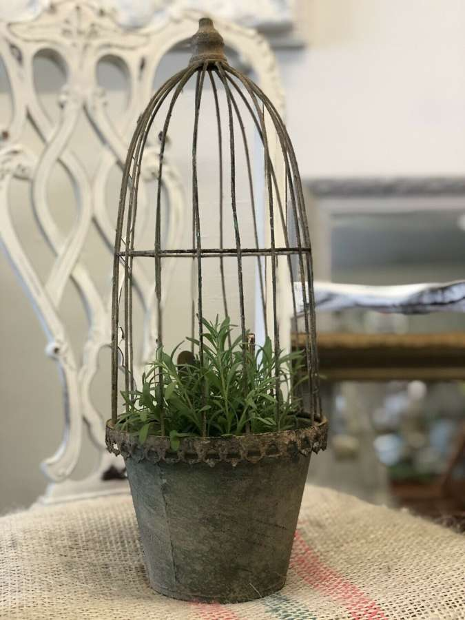 Vintage caged planter medium