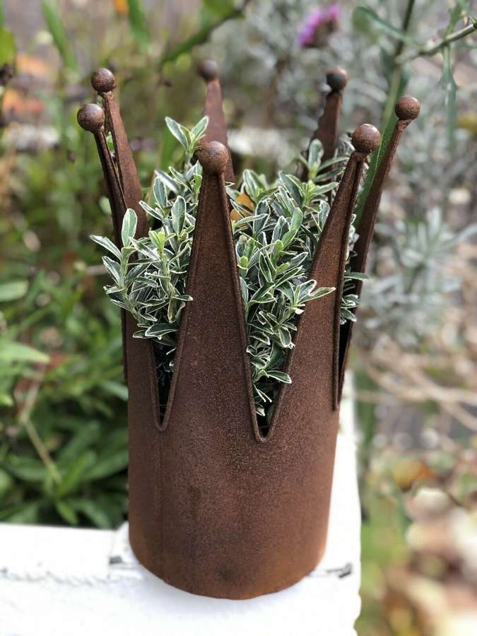 Rusty crown planter sm