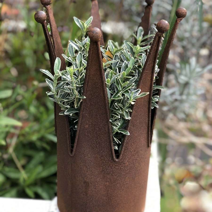 Rusty crown planter sm