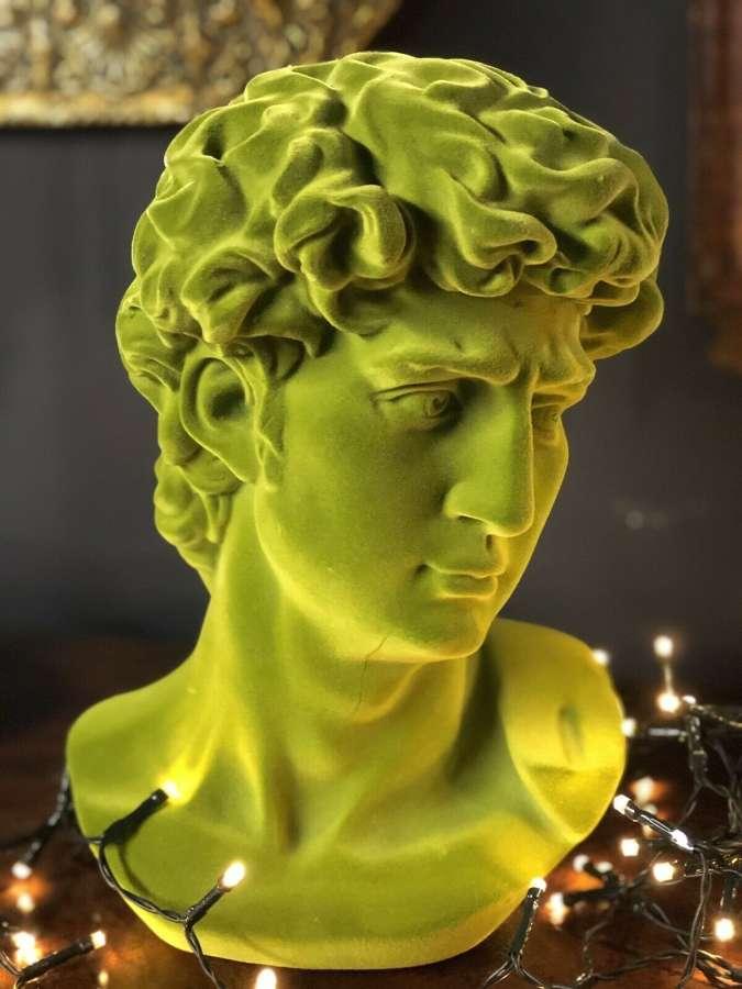 Flock green Michelangelo's David