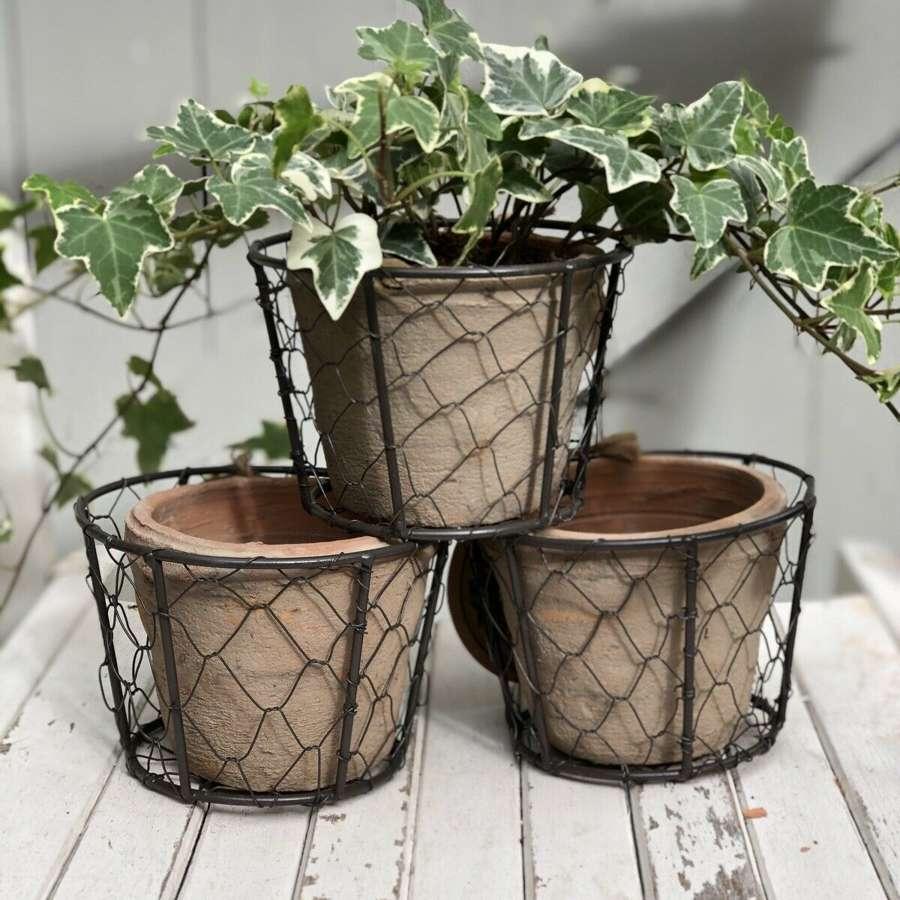 Three herb plant pots