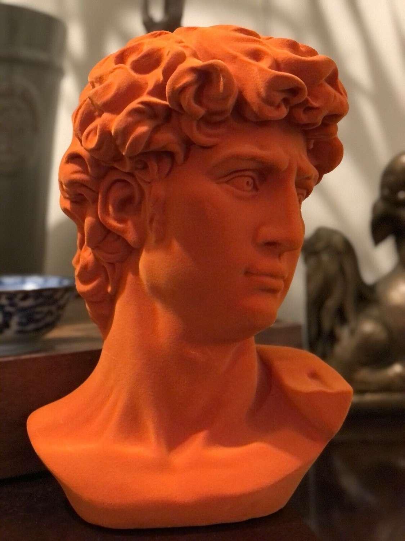 Velvet orange bust of David