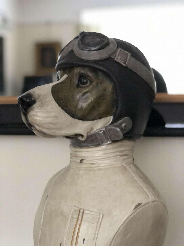 Racing Beagle
