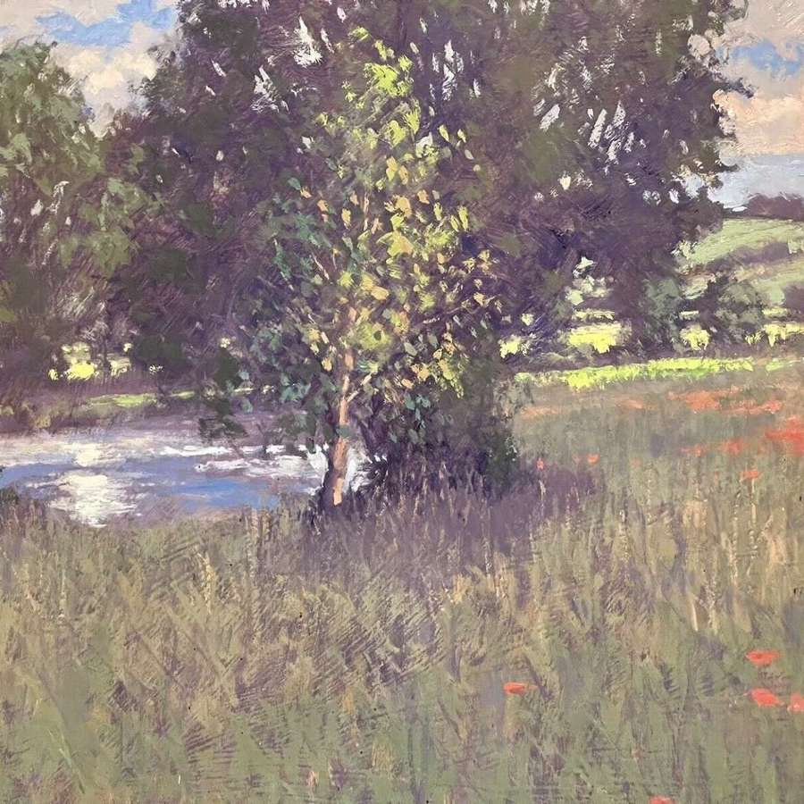 Stream And Poppies Oil On Board Original Landscape Umborne Devon