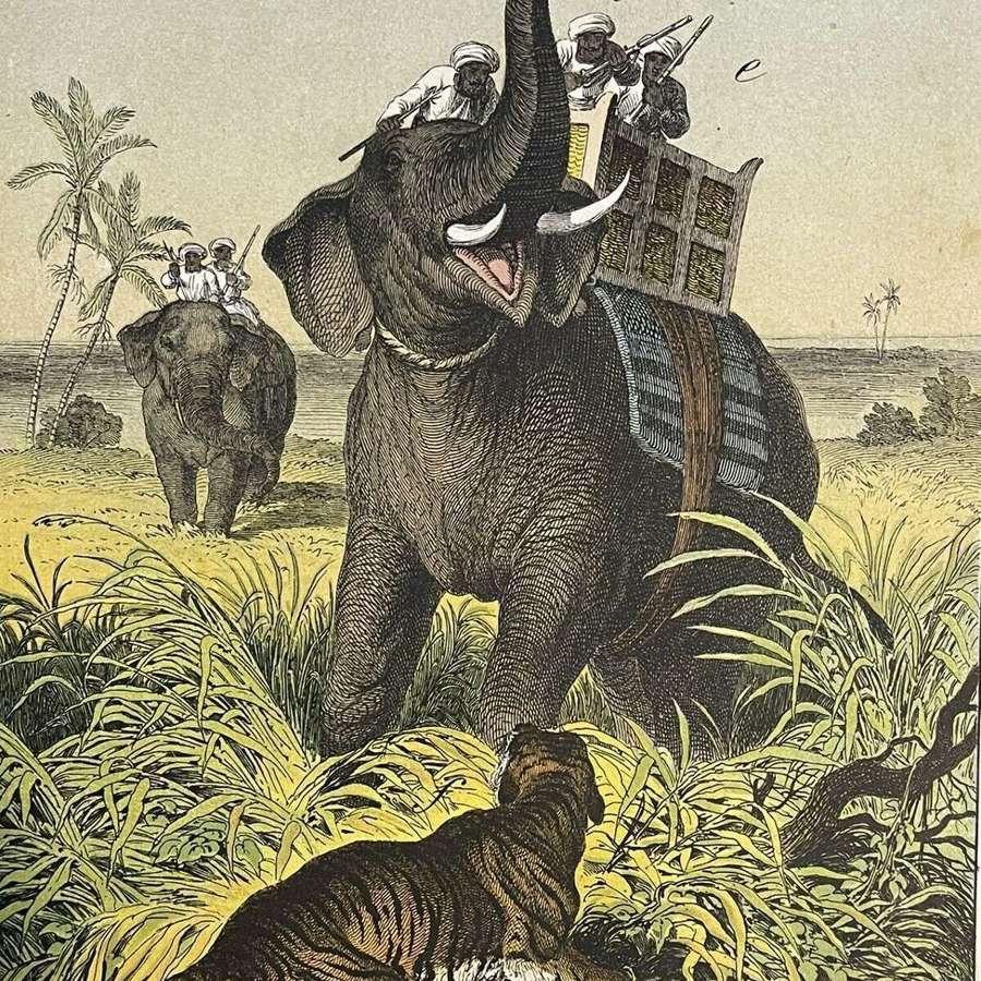 1877 Antique Original Book Plate Elephant hunt