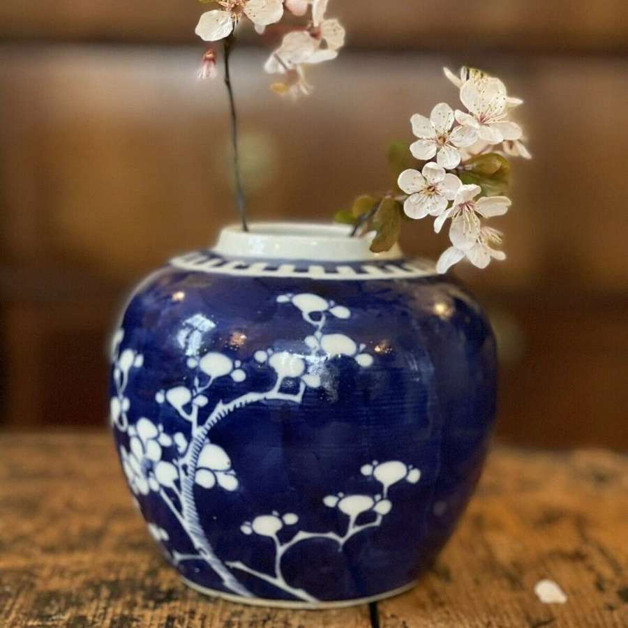 Chinese prunus ginger jar