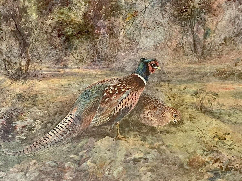 James Stinton watercolour.