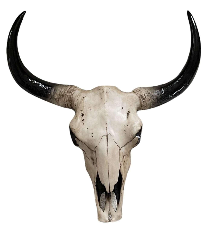 Faux Bison skull wall art