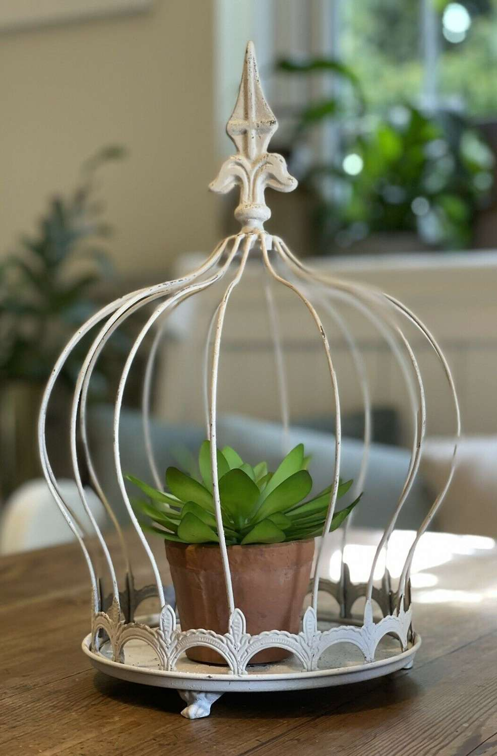 French style plant cloche crown